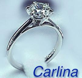 carlina3