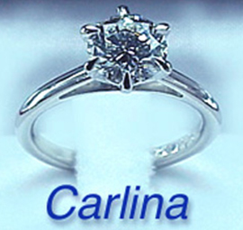 carlina1