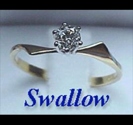 swallow1